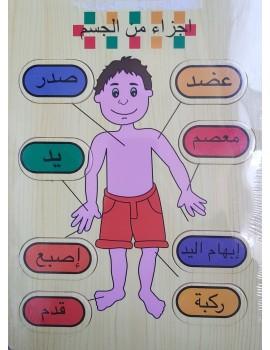 """Puzzle en bois """"Le corps"""" en Arabe"""